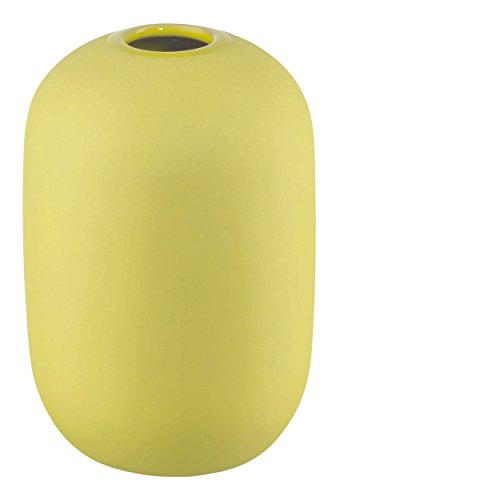 ASA Vase Smoothies