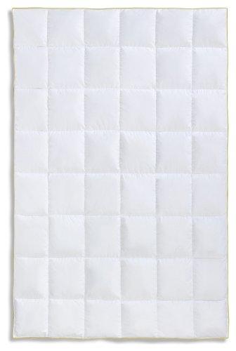 Frau Holle Daunen-Bettdecke für das ganze Jahr aus 100% Gänsedaunen, 155 x 220 cm, 530 g - - Gänsedaunen Bettdecke