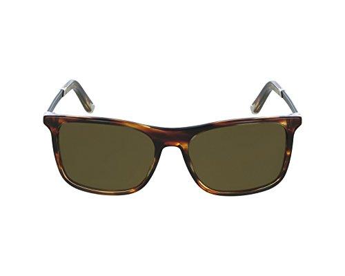 Dolce & Gabbana Herren Sonnenbrille DG4242, Braun (Striped Havana 267373), One size (Herstellergröße: 56)