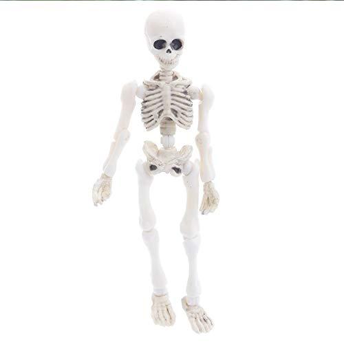 Somorgan Mini bewegliche Knochen Skelett Menschliches Modell Totenkopf Ganzkörperfigur Spielzeug Halloween Requisite, S