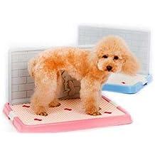 Toilette per cane cani Clean CELESTE XXL