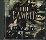 Songtexte von The Damned - Final Damnation