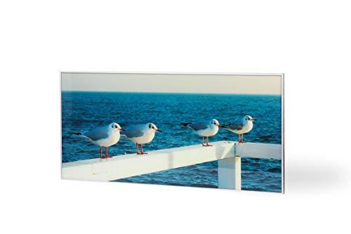 Ecosun Infrarot-Glas-Heizplatte, Wandmontage, Motiv Vögel von The See, 650 W, hergestellt in der EU -