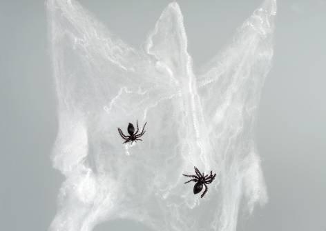 Deko Spinnennetz 20gr mit Spinnen *