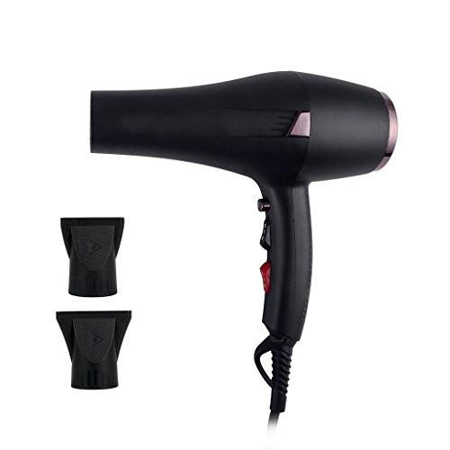 CAOYUArtículos para el hogar Secador de Pelo 2000W Profesional Ion lejos infrarrojo secador de Viaje Conveniente (Color : Negro)