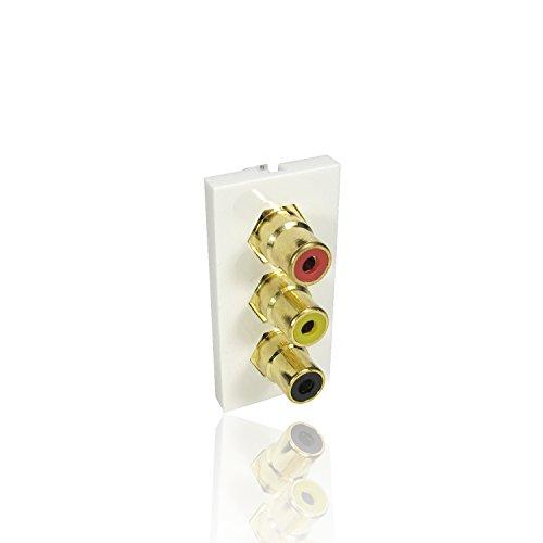 CDL Micro Triple RCA Buchse auf Buchse Clip in Euro Modul F für Frontplatte,-F weiß -