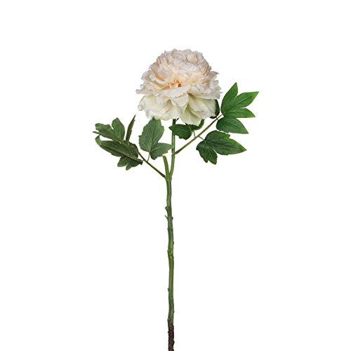 MICA Decorations 1005723 Fleurs Beige