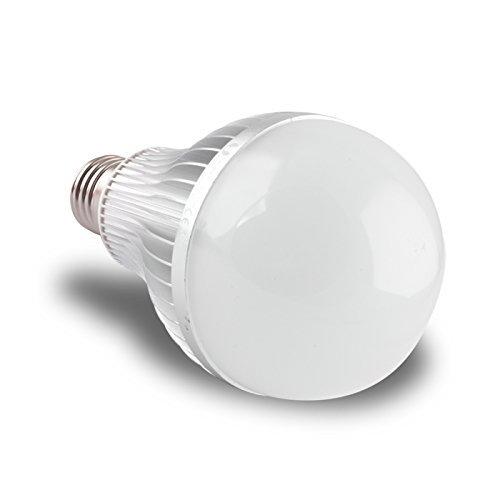 LED E27 39 x SMD A80 warmweiss 15W 1200Lm Birne Leuchtmittel 7529 [Energieklasse A++] (Eisen Licht 15)