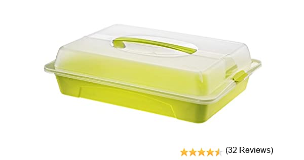 43.5 x 29.5 x 0.11 cm Verde Rotho Contenitore Fresco e Asciutto in plastica PP Ideale per trasportare e Raffreddare Gli Alimenti Plastica con Maniglia e Cuscinetto refrigerante