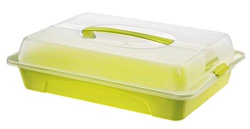 Rotho Cool und Fresh Partybutler, Kunststoff (BPA-frei), ,