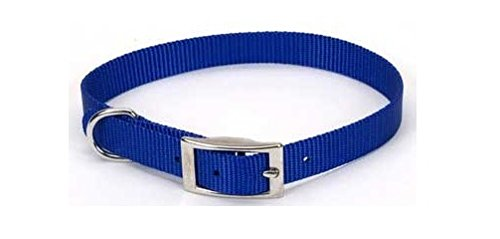 Artikelbild: Coastal Products Dog Collar High Quality Nylon Adjutable Durable Blue 5/8'X16'