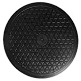 """LapWorks 10"""" Heavy Duty Swivel With Steel Ball Bearings for Indoor/Outdoor Use With Flat Panel Monitors, Tv's, Potted Plants and Stereo Speakers"""