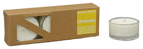 3x Beduftete Natural Citronella Plant Wax Tealights in recycled glass covers Pleasant...