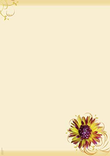 Briefpapier Sommerzauber, 50 Blatt DIN A4, 90 g/m², DP873, Schreibpapier, Geburtstag, Einladung, Brief, Jubiläum, Danke, Blumen, Brief schreiben, Liebesbrief