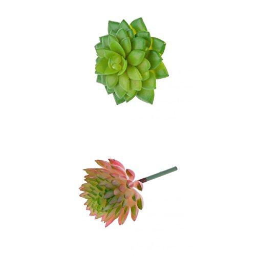 Gazechimp Künstliche Sukkulenten Kunstpflanzen Pflanz Blume Saftiges Alocasia + Echeveria Haus Dekoration