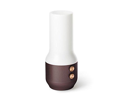 Lexon LA106MM Enceinte Bluetooth pour Appareil Bluetooth Marron