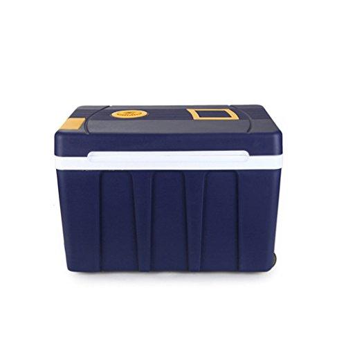 Preisvergleich Produktbild LJ Auto-Kühlraum 50L Auto-Haus-Doppelgebrauch-mini kalte und warme Inkubator-Kühlungs-Wohnung-Kälte-Minikühlraum