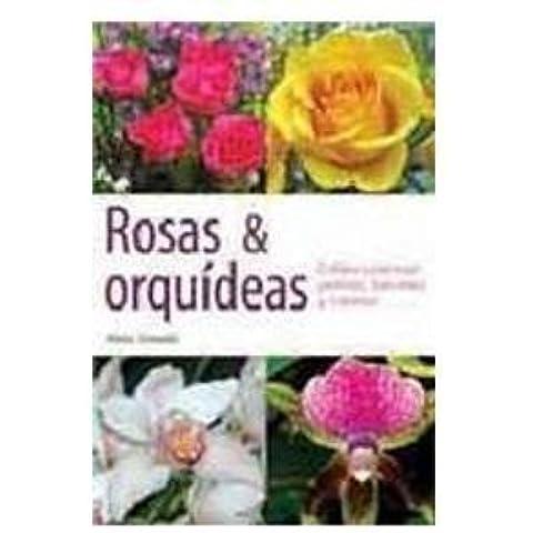 Rosas y orquideas/ Roses and Orchids: Cultivo casero en jardines, balcones y macetas/ Cultivation in Home Gardens, Balconies and Pots (Spanish Edition) by Alexia Cernadas (2009-09-11)