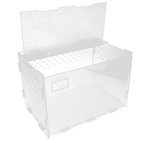 Homyl Reptilien Fütterungsbox Transportbox, Tragbar und Abnehmbar, 30 x 20 x 20 cm