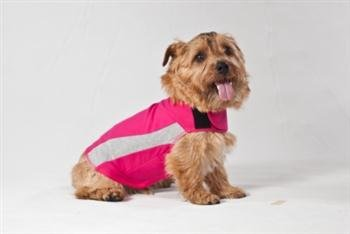 Thundershirt, Polo per Cani