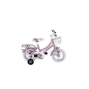 "312braLqydL. SS300 Alpina Bike, Bicicletta Bambina Olandesina 12"""