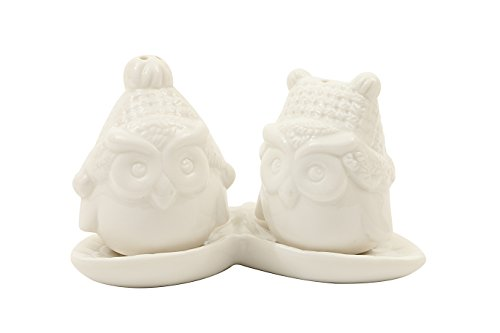 Creative Co-Op Ceramic Owl Salt and Pepper Shakers with Tray (Set of 3), White by Creative Co-op -