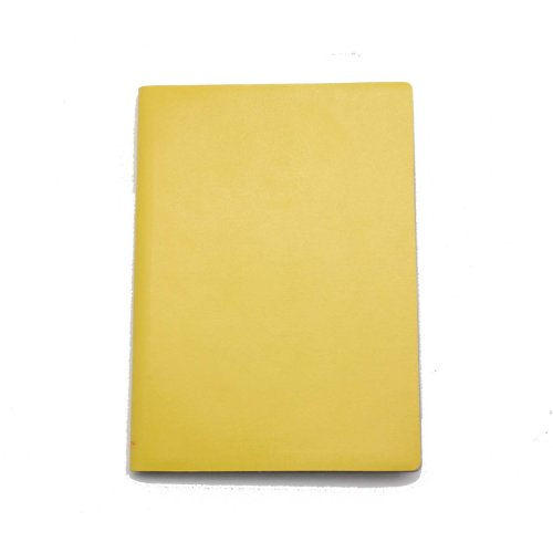 paperthinks-notizbuch-9-x-13-cm-96-seiten-dunn-mango