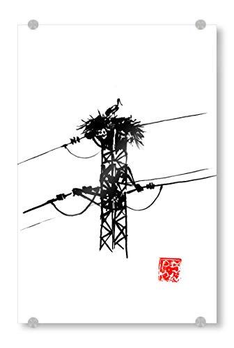 artboxONE Acrylglasbild 90x60 cm Tiere The Nest Bild hinter Acrylglas - Bild Nest Electric Wire Bird
