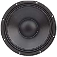 "Audio-X 12"" Neodium Speaker"