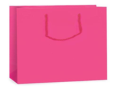 Hot Pink Matte Gift Bags Mediummini-Pk 13X5X10 inch