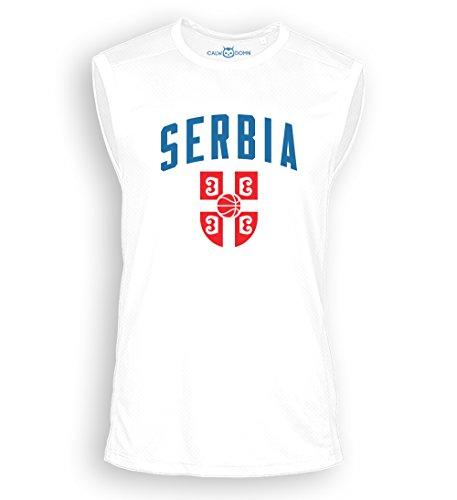 WM 2018 Serbia temporary tattoo Flag 5 x Serbien Tattoo Fan Fahnen Set 5