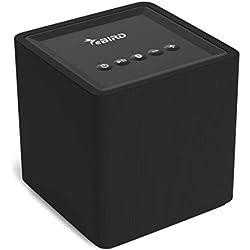 eBIRD Enceinte sans Fil Bluetooth Multiroom | Haut-Parleur Intelligent Chromecast intégré | Compatible Android et iOS | Streaming avec Google Home, Spotify, Autres applis de Musique | 10 Watts | Noir