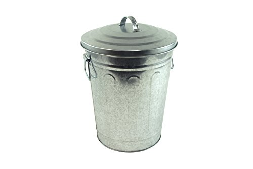 Steven Raichlen Best of Barbecue Steven Raichlen Best of Barbecue Galvanized Charcoal and Ash Can with Lid
