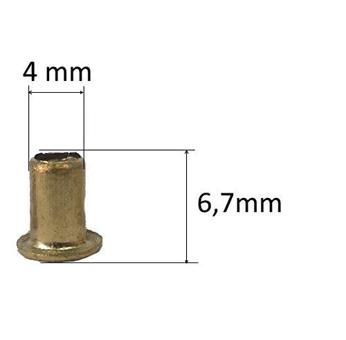 APIFORMES Rähmchenösen-Reinmessing - 1000 Stück 4x6,5 mm | Rähmchen | verdrahten | Beuten | Honig | Bienen | Imkerei | Imkereibedarf