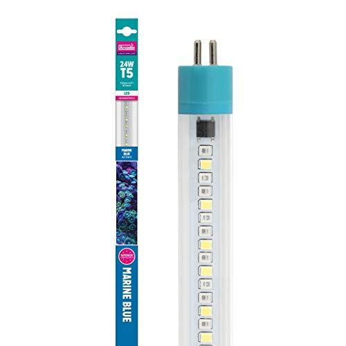 Arcadia LED Tube Marine Blue 8 Watt FEEB24 Aquarium (Länge wie 24 Watt T5 TL5 Leuchtstofflampe) -