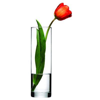 Pasabahce Botanica Flora Vase 10.5 inch(43767)