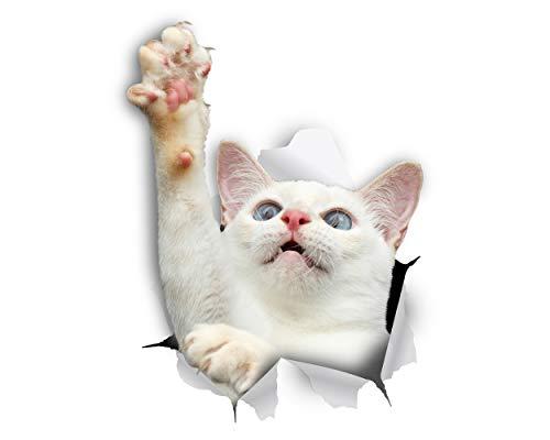 Winston & Bear Chat 3D autocollants - 2 Pack - blanc atteignant chat autocollant pour mur, réfrigérateur