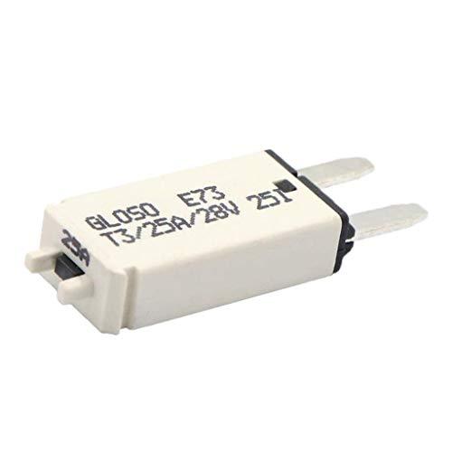D DOLITY Fusible de Disjoncteur Électrique Audio de Voiture Stéréo - 25A