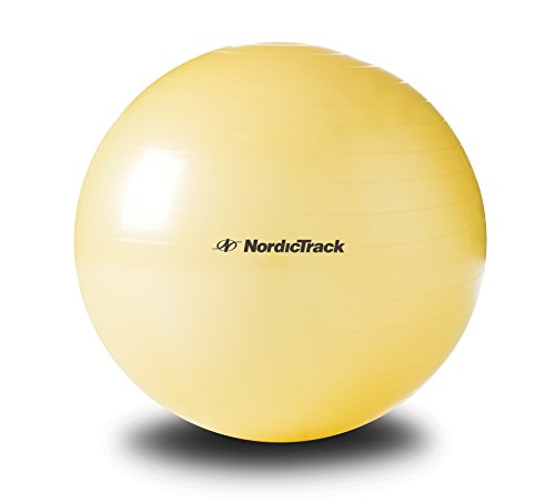 nordictrack-stability-ball-55cm