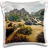 photography-landscape-hidden-valley-landscape-16x16-inch-pillow-case