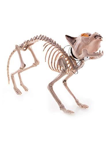 n Dekoration Deko Körper Skelett Einer Katze mit Licht und GeräuschFunktion, 38cm,, Skeleton of Cat with Light and Sound, ideal für Jede Halloween Party / Feier, Creme ()