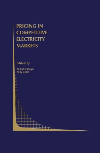 Pricing in Competitive Electricity Markets (Topics in Regulatory Economics and Policy)