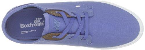 Boxfresh Stern, Scarpe stringate Uomo Blu (Blau))