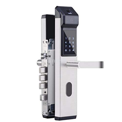 Homyl Biometrisches Türschloss, Multifunktion Elektronisches Schloss mit Fingerabdruck-Verifizierung, Passwort und Entry-Karte, Low-Voltage Alarm