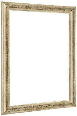 NiRa35-Top Cornice per Foto e Poster 42x119 cm Foglia in Coloreee argentoo Foglia cm con Vetro Acrilico Riflettente c5c465