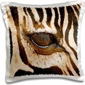 Zebras - Tanzania, Tarangire National Park, Common zebra eye 16x16 inch Pillow (Zebra Eye)