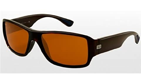 Ray Ban Rb4199 Shiny Brown Frame/Polarized Dark Brown Lens Plastic Sunglasses