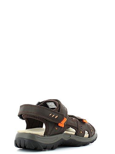 Lumberjack Bob Sandales Neuf Chaussures Homme Brun