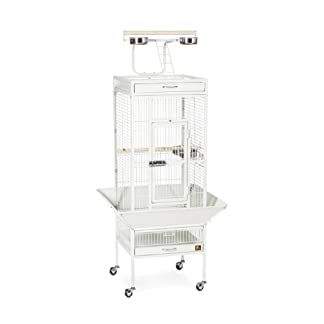 Prevue Hendryx 3151C Pet Products Wrought Iron Select Bird Cage, Chalk White,18'' x 18'' x 57'' 26