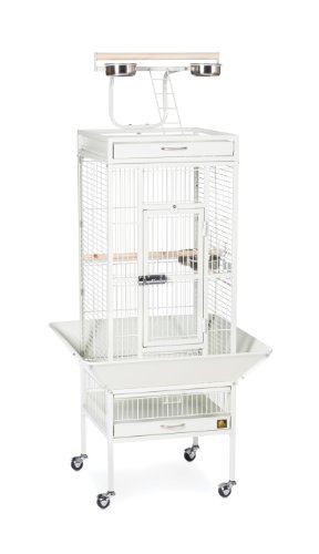 Prevue Hendryx 3151C Pet Products Wrought Iron Select Bird Cage, Chalk White,18'' x 18'' x 57'' 1